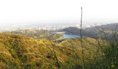 Great hiking trail on the Cahuenga loop to get fantastic views of Los Angeles