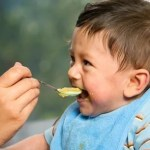 As primeiras refeições do bebê: como incorporar alimentos sólidos em sua dieta?