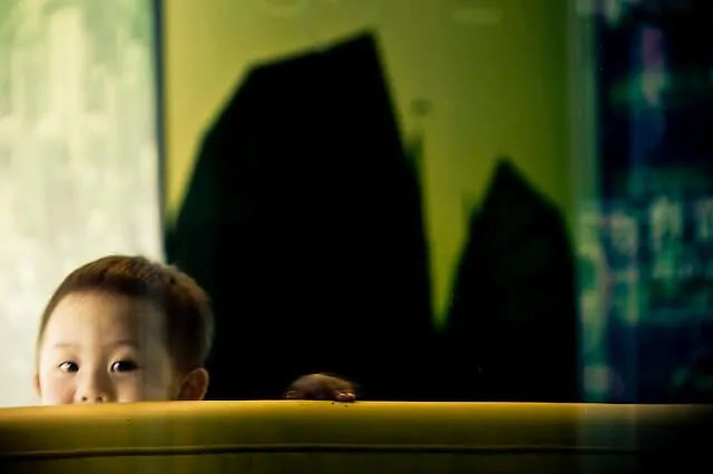 crianças extrovertidas e crianças introvertidas