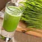 Suco de grama de trigo: benefícios e como preparar