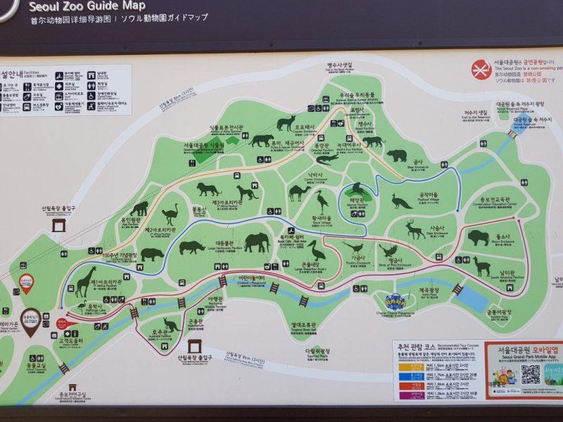 seoul zoo with kids