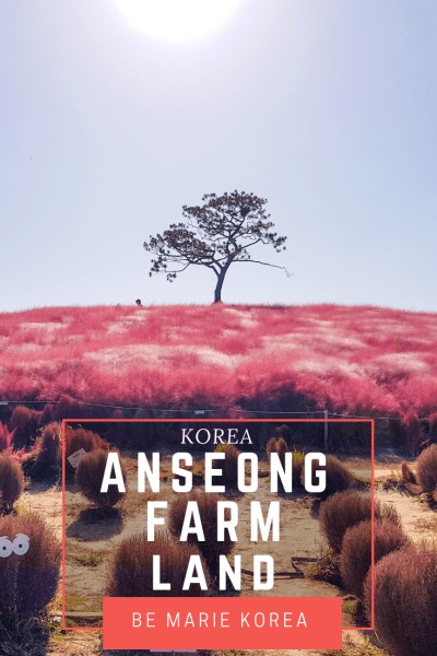 farmland anseong korea