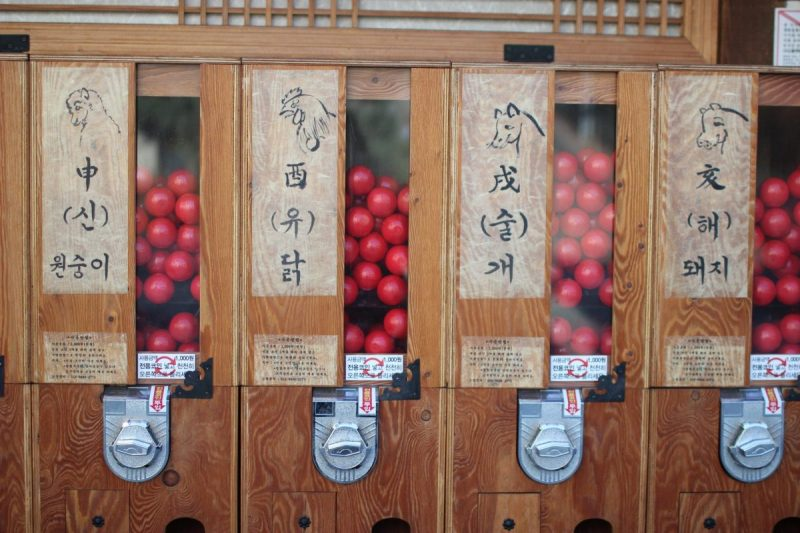 what to do in jeonju