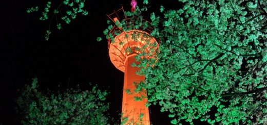 things to do in daegu, e tower