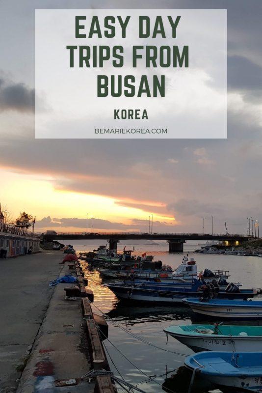 busan to gyeongju day trip