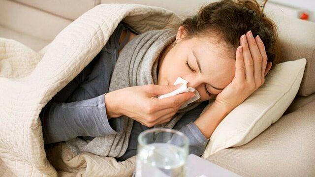 Gut Bacteria Immunity