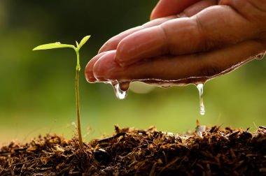 Correção e conservação dos solos