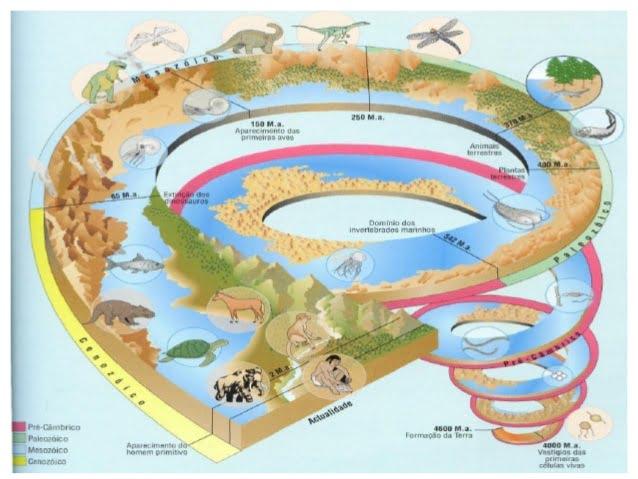 Grandes etapas na História da Terra