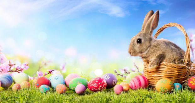 Ficha de trabalho – Easter (1) – Soluções