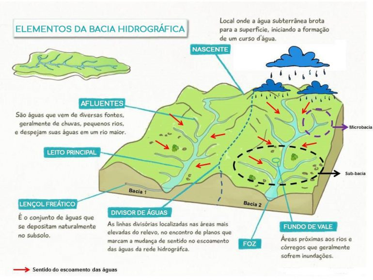 Ficha de Trabalho – Bacias hidrográficas (1) – Soluções