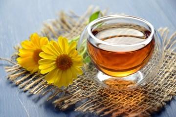 5 plantas medicinais que auxiliam na ansiedade e insônia