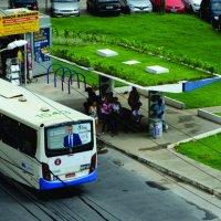 Salvador instala seu primero ponto de ônibus com teto verde
