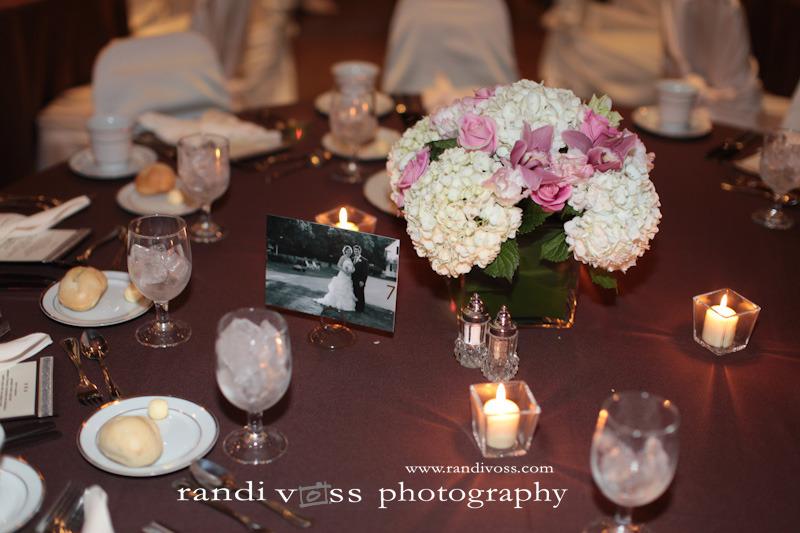 Photos courtesy of Randi Voss