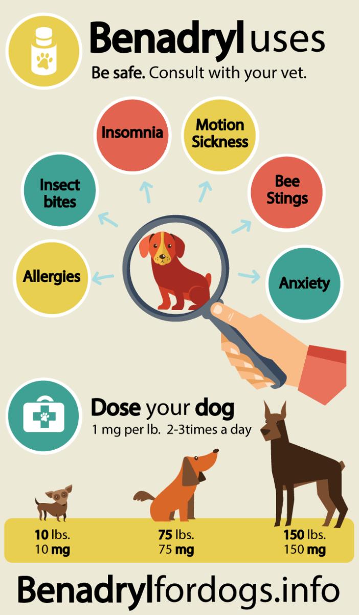 benadryl-dosage-for-dogs.715x1224