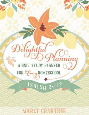 Delightful Planning cover 400x518