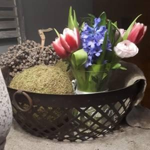 voorjaarsbloemen in ijzeren mand met ringen.