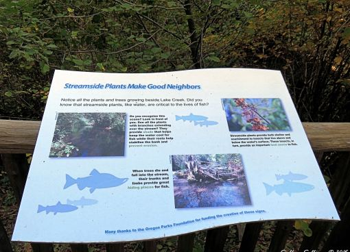 Metolius Preserve Hike October 2015Fish sign