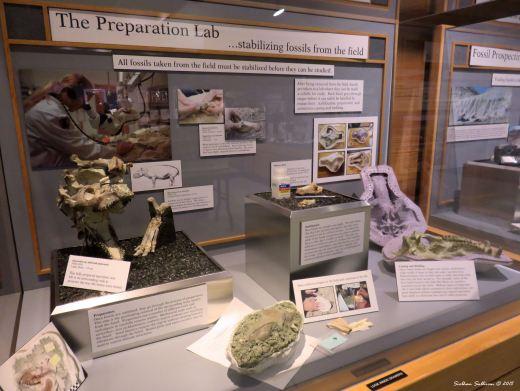 Prep lab at John Day