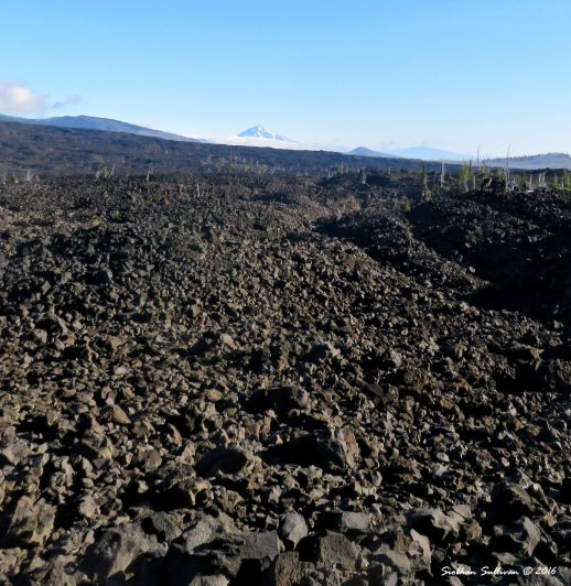 View of Mt Jefferson and surrounding peaks from lava fields
