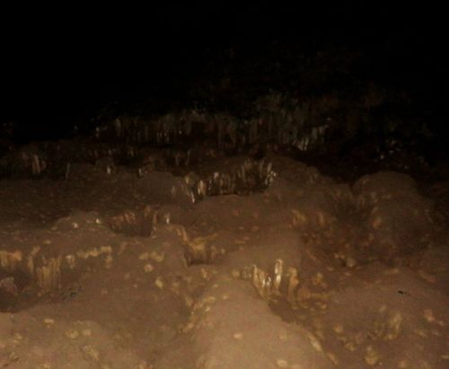 Lava River Cave sand gardens 16Aug2016