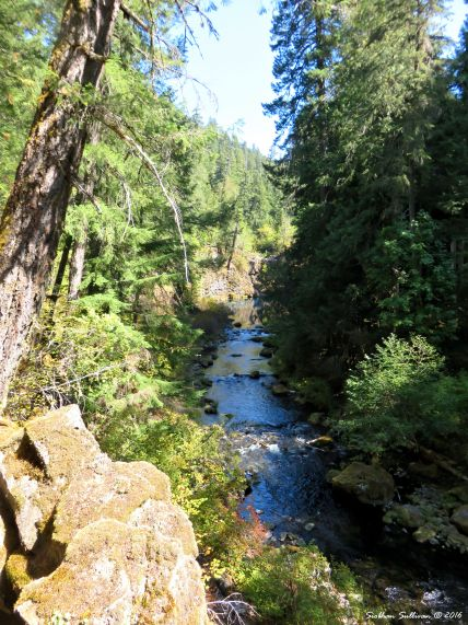 McKenzie River 15Sept2016