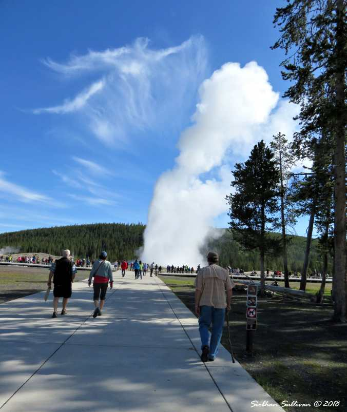 Yellowstone Favorite Places 3June2015