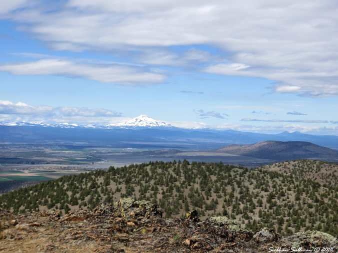 View of Mt. Jefferson from Gray Butte trail 9May2018