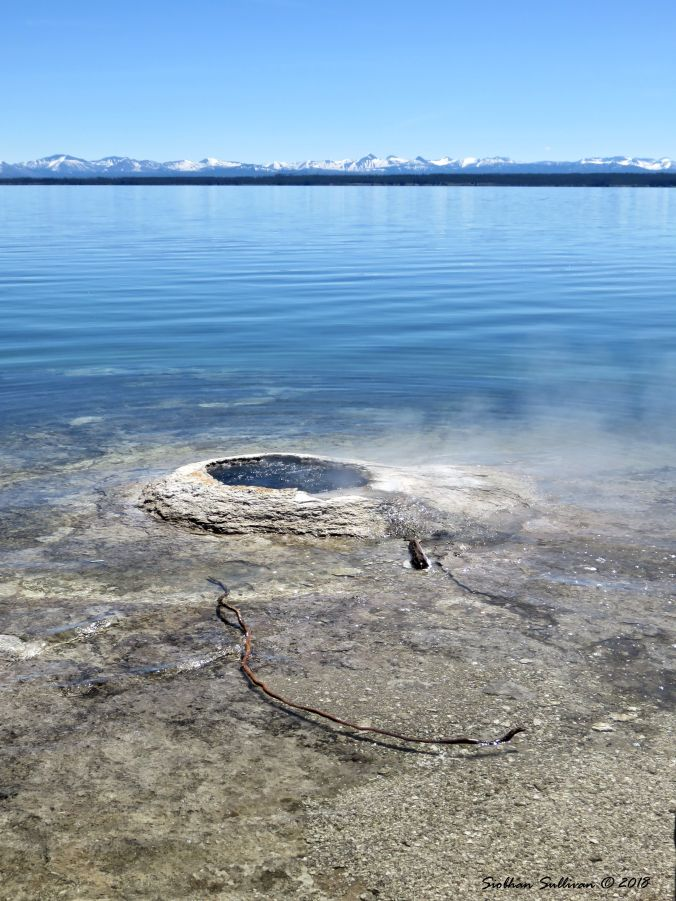 Big Cone at Yellowstone Lake 2June2018