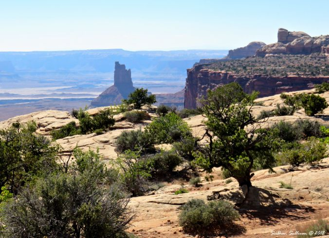 National Park Travels - Canyonlands, Utah  4May2017