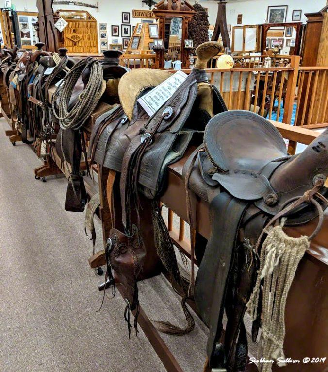 Saddle row, Burns, Oregon 12April2019