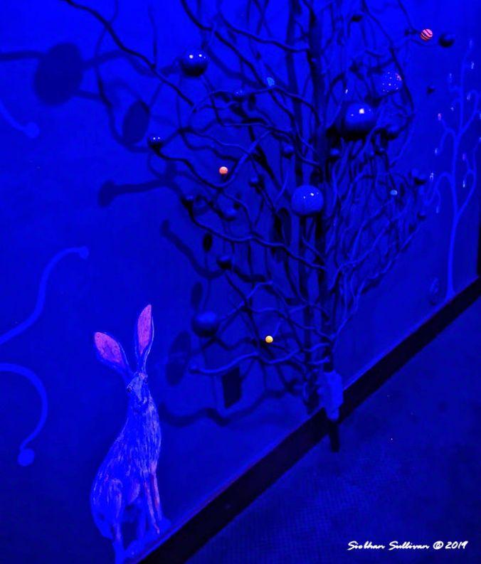 secret blue views of hidden rooms, McMenamins, Bend, Oregon 19 January 2020