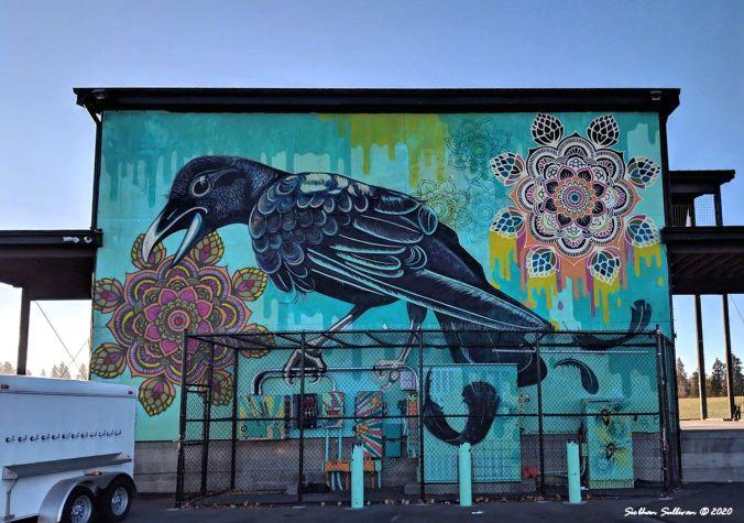 Art at the Amphitheater , Bend, Oregon November 2018