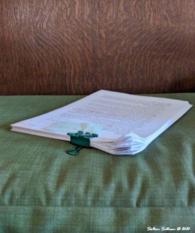 Manuscript Siobhan Sullivan August 2020