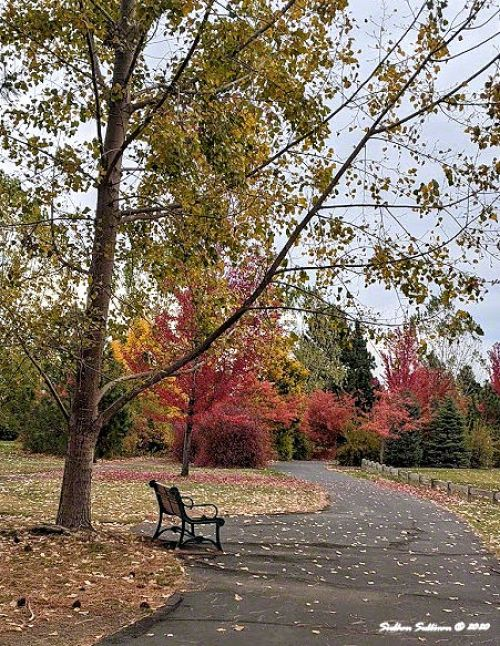 A walk into fall in Bend, Oregon
