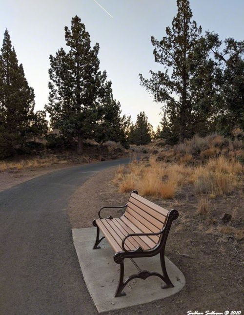 Bench in a Park Bend, Oregon October 2020