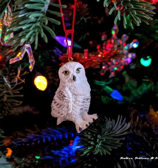 Snowy owl ornament December 2020