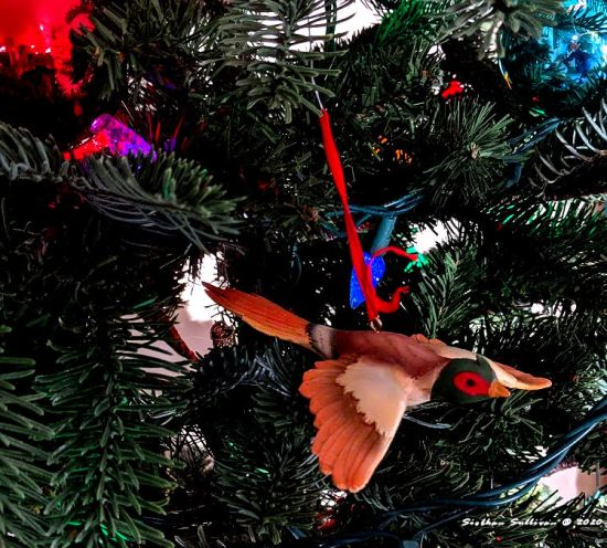 Birds in my tree pheasant ornament December 2020