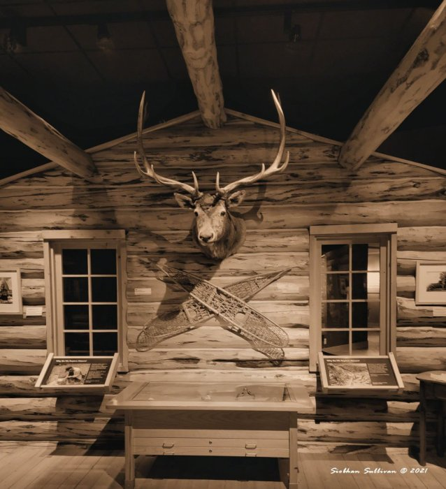 trapper's cabin re-creation in Cody