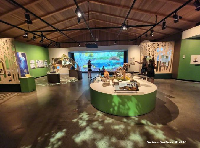 Beavers exhibit in Bend