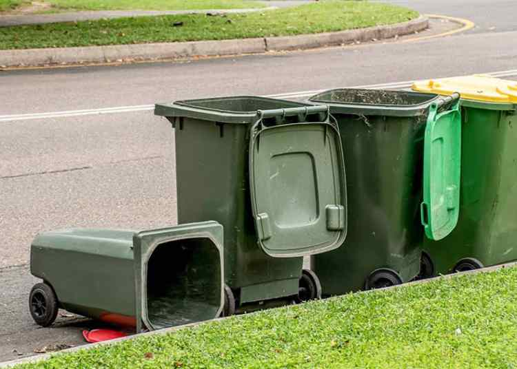 These are wheelie bins.