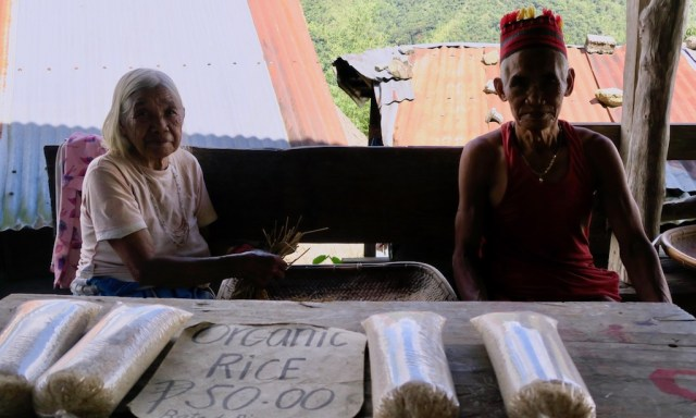 Ein altes Ifugao-Paar verkauft Batad Reis