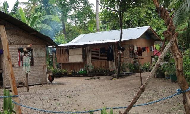 Philippinisches Holzhaus mit kleinem Hof zwischen Palmen