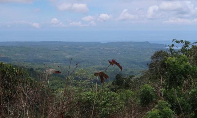 Blick auf die Insel Siquijor vom Mount Bandilaan