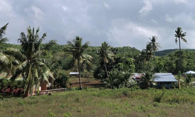 Hinterland Siquijor mit Palmen und ein paar Wellblechhütten