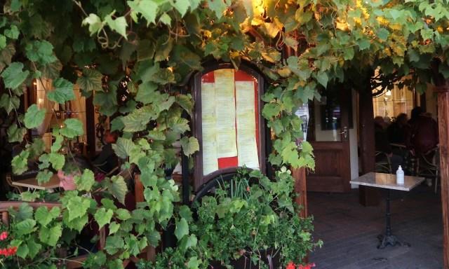 Die Weinranken des Restaurants Pod Winogronami in Kolberg
