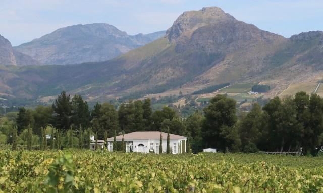 Weingut im Franschhoek-Tal