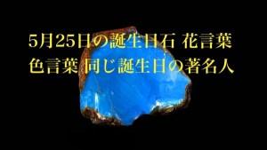 5月25日生まれのあなた。お誕生日おめでとうございます。誕生石はブルーアンバー、意味と誕生花、プレゼントは?