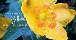ラッキーカラーは「黄」。カラーの意味や効果について