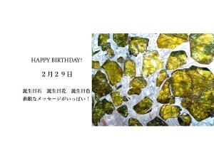 2月29日生まれのあなた。お誕生日おめでとうございます。誕生石はペリドットを含む隕石(パラサイト隕石),意味と誕生花、プレゼントは?