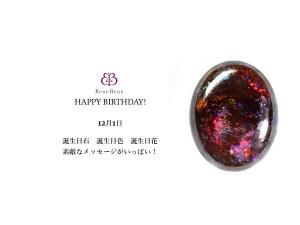 12月1日生まれのあなた。お誕生日おめでとうございます。誕生石は,アイアン・オパール意味と誕生花、プレゼントは